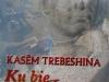 kasem-trebeshina-ku-bie-iliria