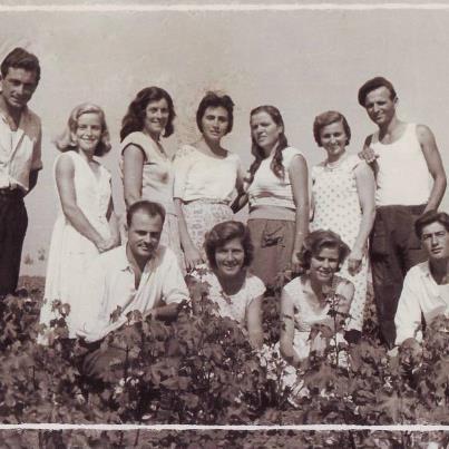 SNji grup te rinjsh nga Savra, 1963