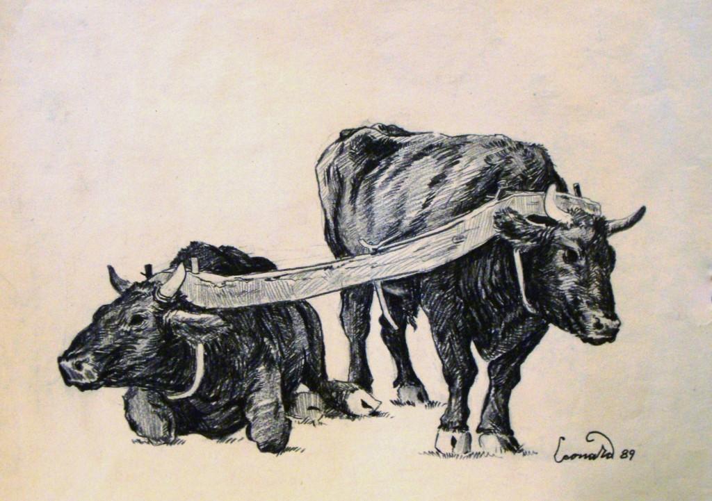 Qetë (skicë nga Leonard Pervizi)