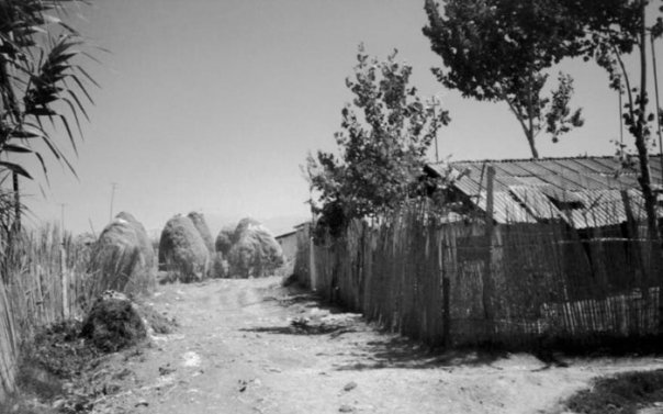 Rrugicë midis Barrakave