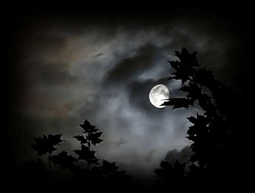 në orët e vona të natës... kur ndërgjegja fluturon diku...