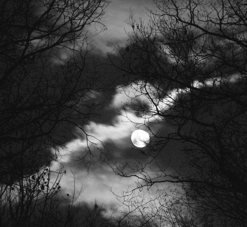 Natë me hënë....