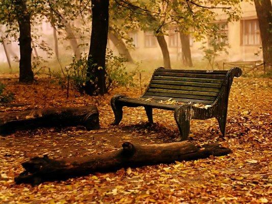 Vjeshtë në park...