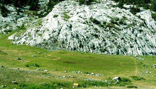 Fushë Futbolli në Alpe (Bogë)