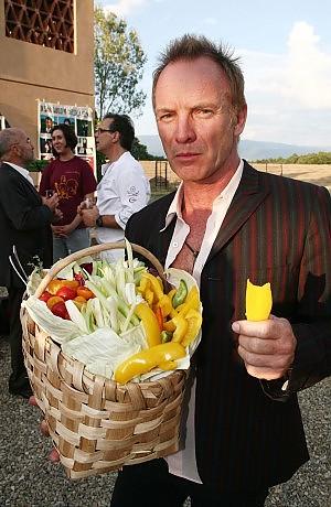 Sting dhe Shporta e tij e vjeljes