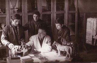 Në Institutin Buqsorë të Kamzës, viti 1970.