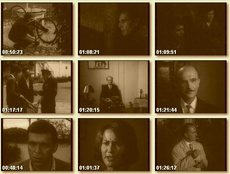Njesiti guerril - film