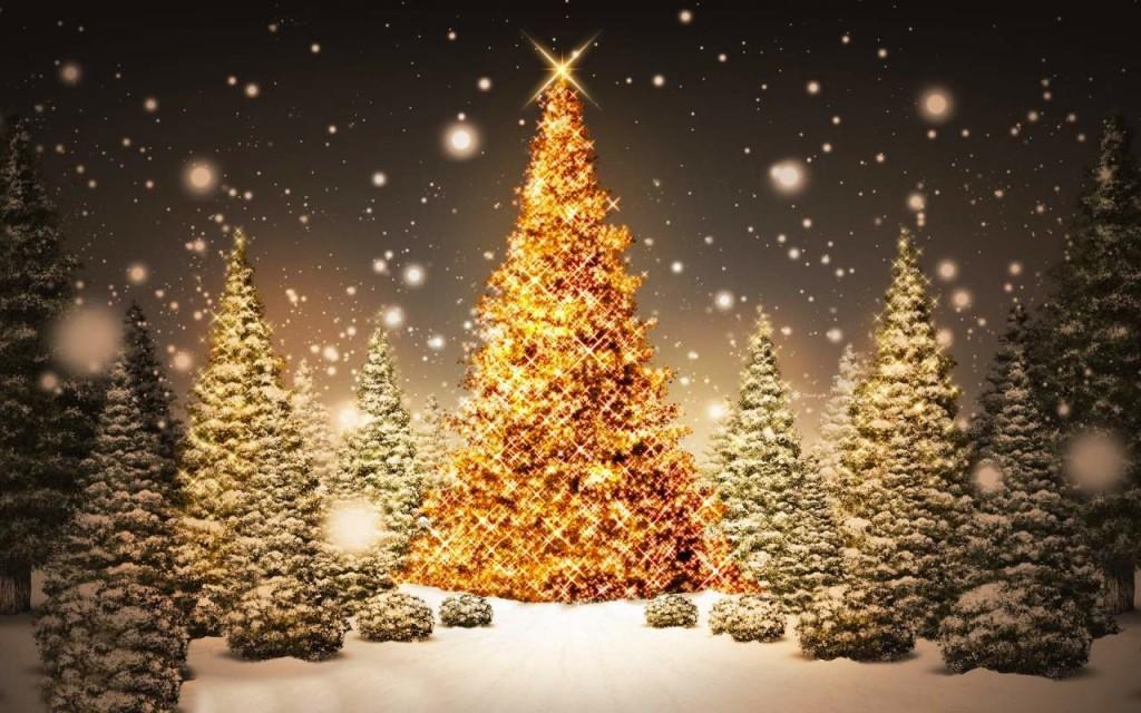 Bredhi i Krishtlindjve