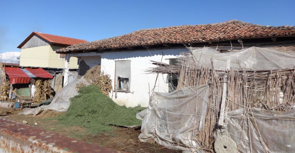 Çermë gusht 2014 - Kamp, ish shtëpia e Dobrajve (foto Edi Salla)