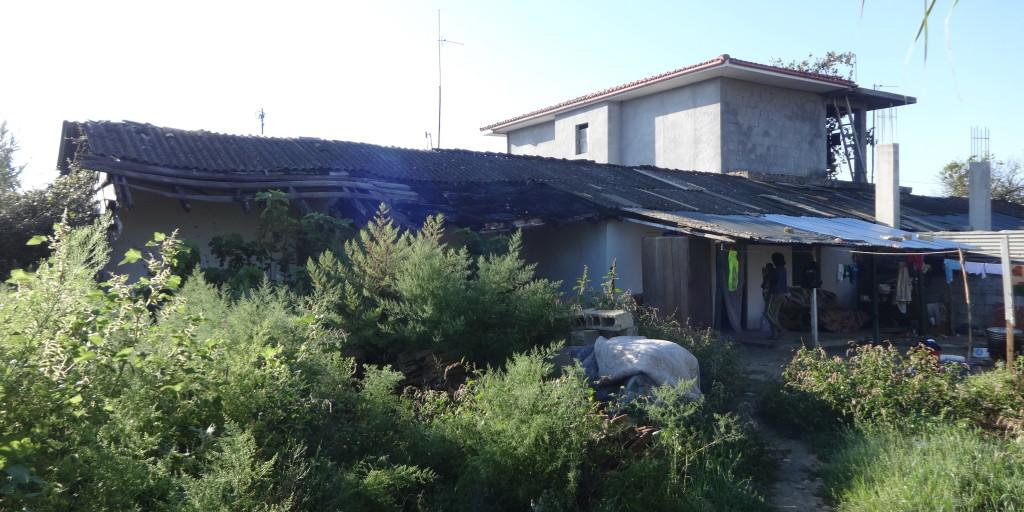 Savër - gusht 2014,  ish barakë e zënë nga hallexhinj (foto Edi Salla)