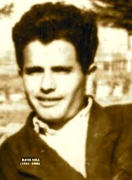 Poeti Havzi Nela (1934-1988)