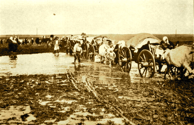 Genocidi në zonën e Preshevës