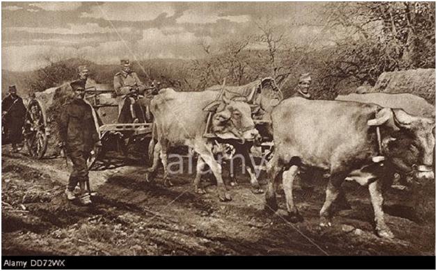 Mbreti jugosllav duke ikur nëpër Shqipëri