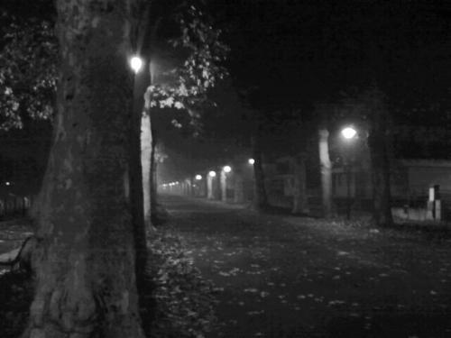 mbështjellë me mjegull... dehun me natë,