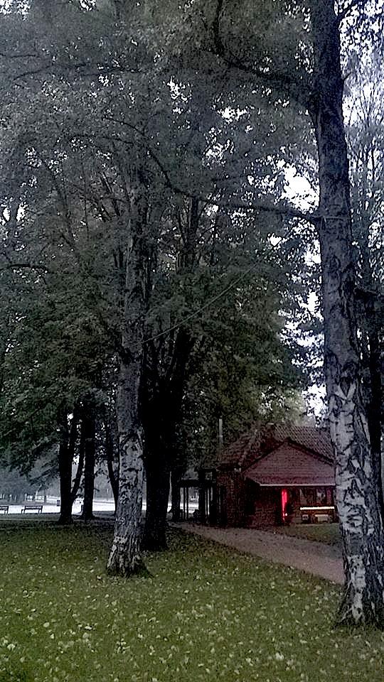 "Parku ""Rinia"" Korçë ku u shkrua kjo poezi"