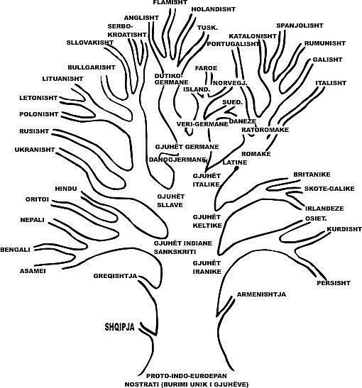 Pema e Gjuheve IndoEuropiane - shqip