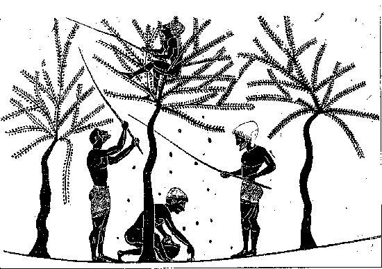 Shkundja e Ullinjve në Greqinë e Lashtë