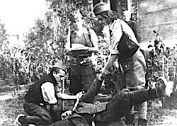 Cetnikë në krimet e Bihorit