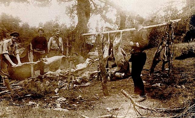 Partizanë duke prerë bagëti