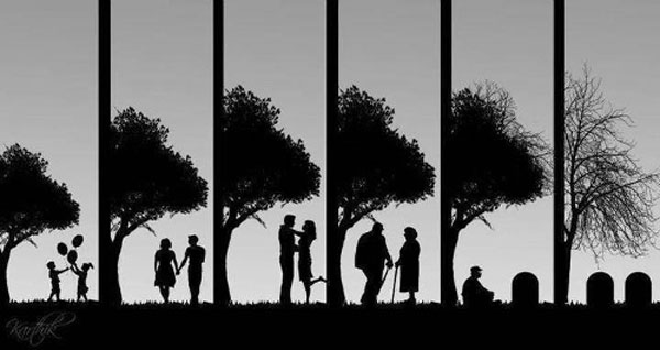 Cikli i Jetës...