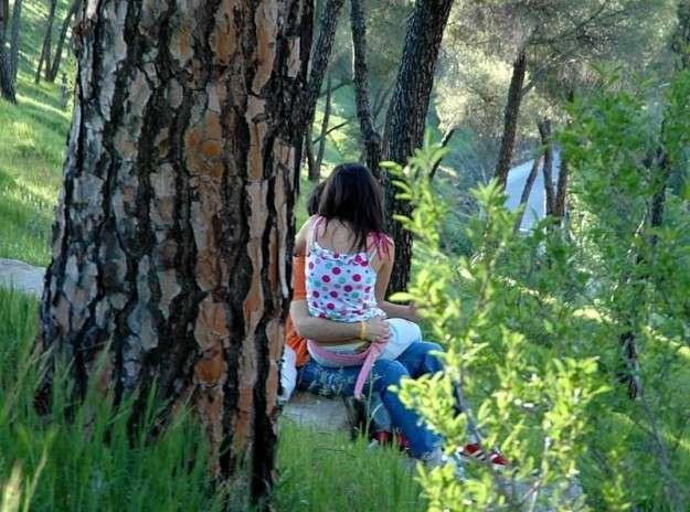Dashni ne pyll...