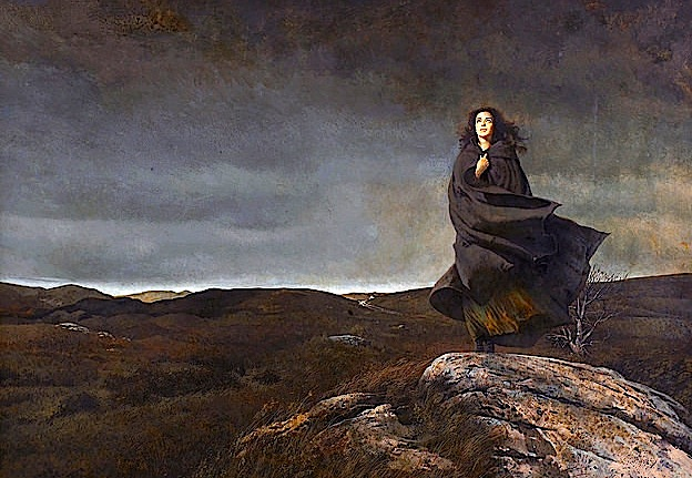 Grua Vetmitare