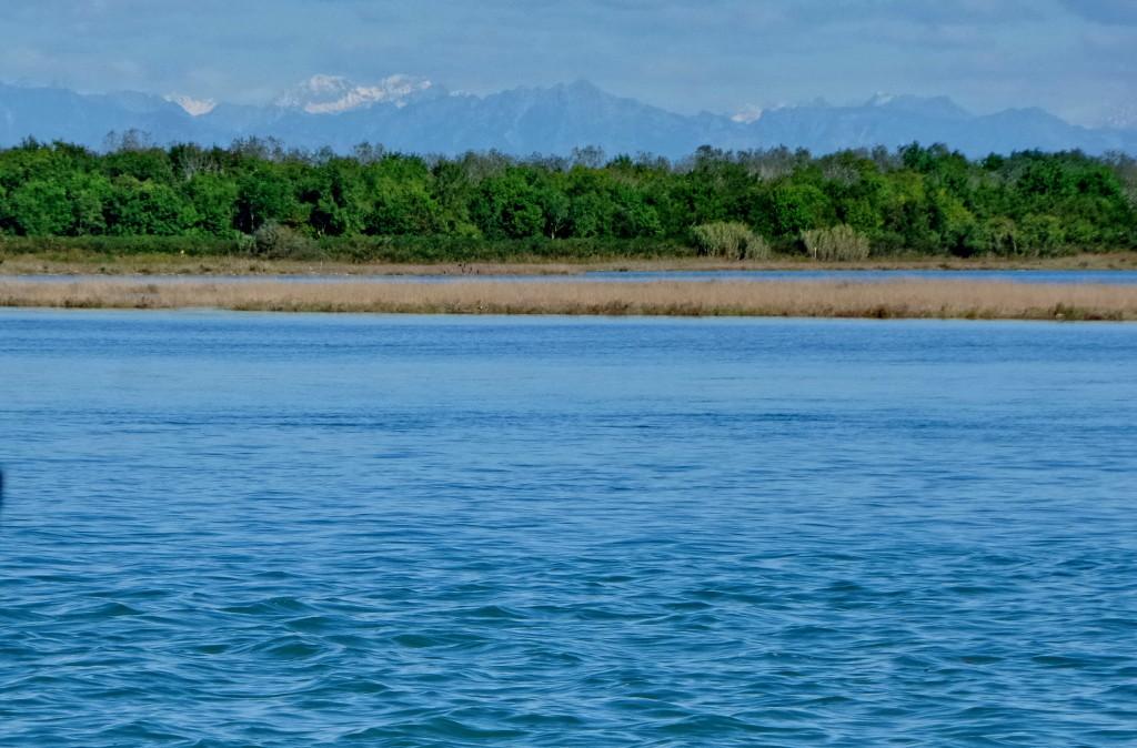 Laguna pas pyllit në Bibione