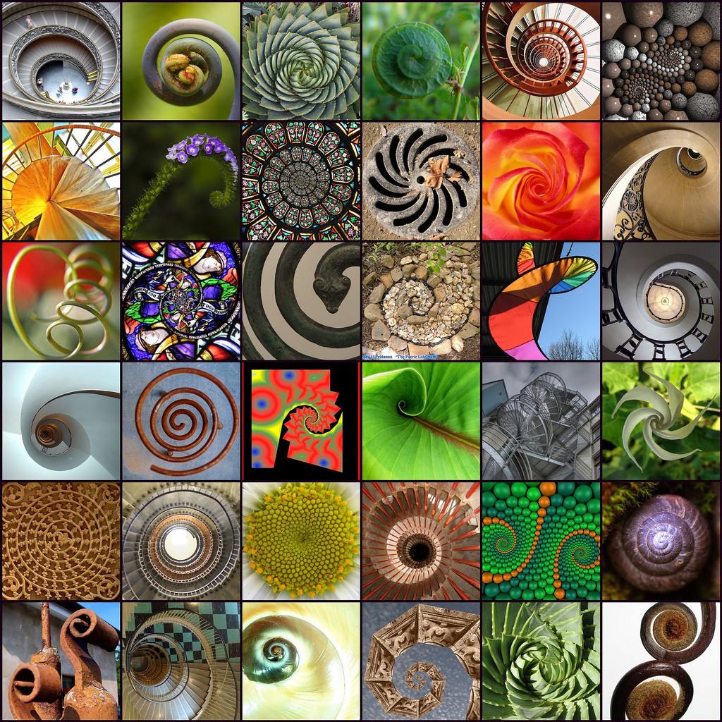 Natyra dhe Njeriu - simbas Vargut te Fibonaccit