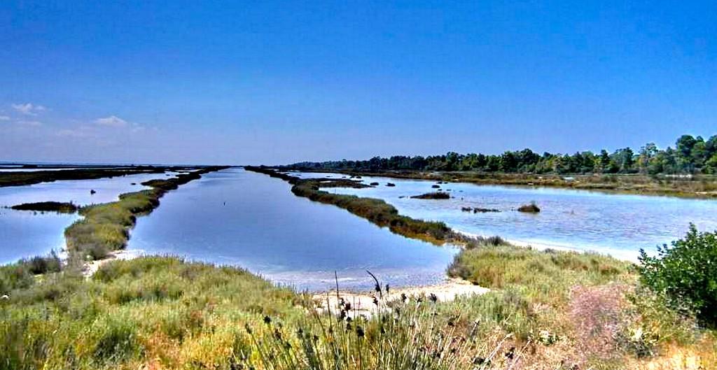 Laguna e Karavastasë
