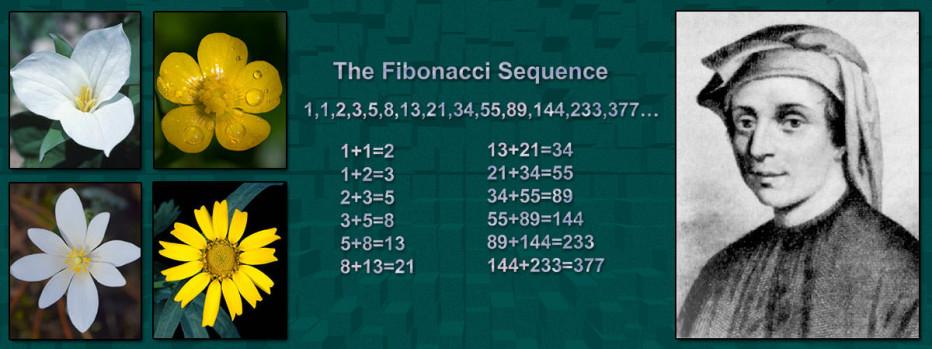 Fibonacci dhe Faktet e tij