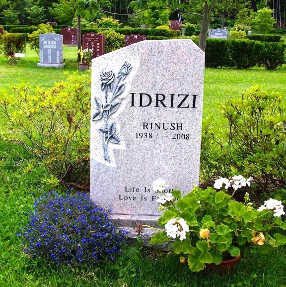 Varri i Rinush Idrizit në Amerikë
