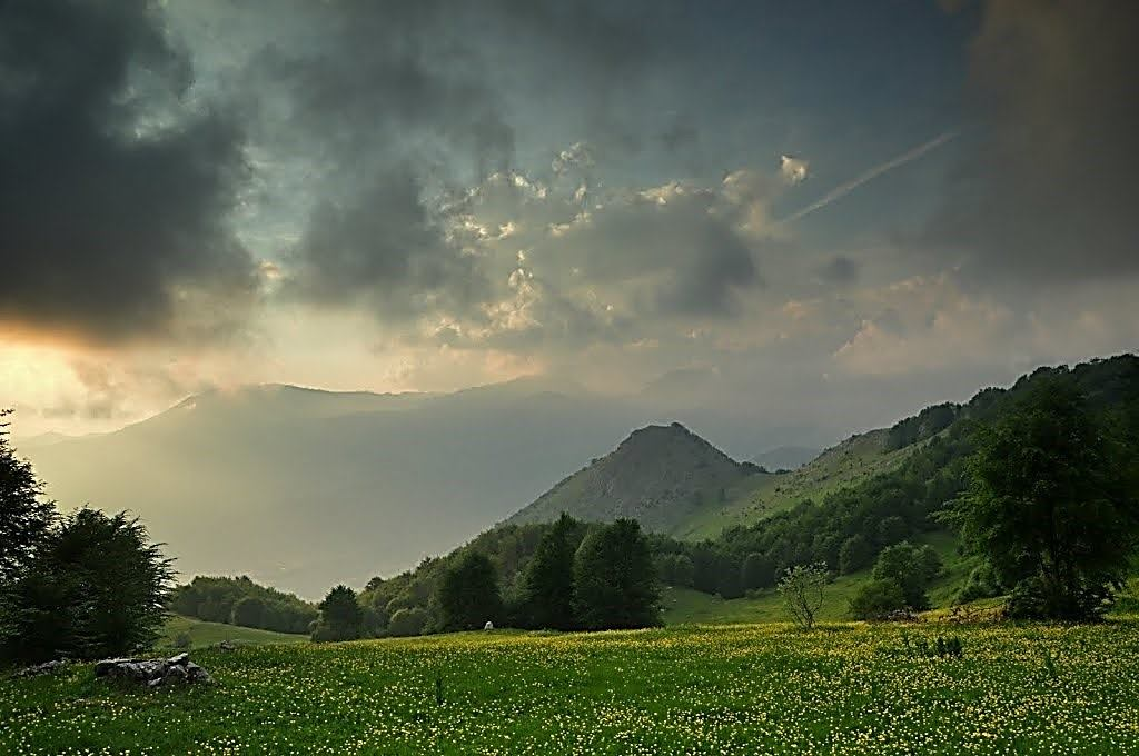 Livadhe dhe lëndina luleshumë, përballë malit të Polemit