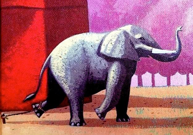 Elefanti i lidhur