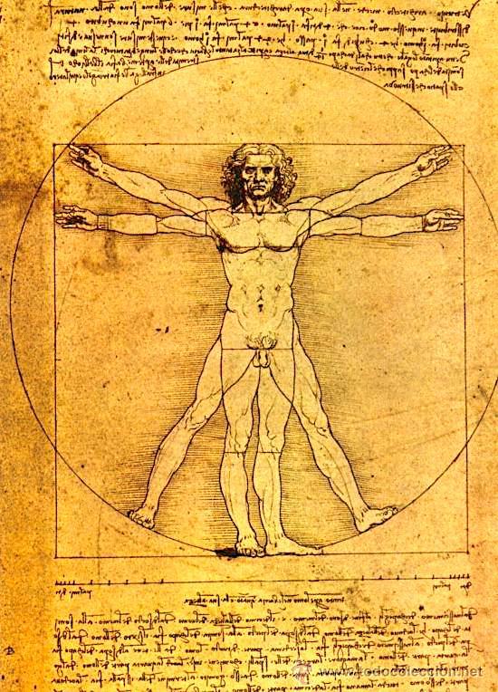 Leonardo da Vinci - Trupi i Njeriut
