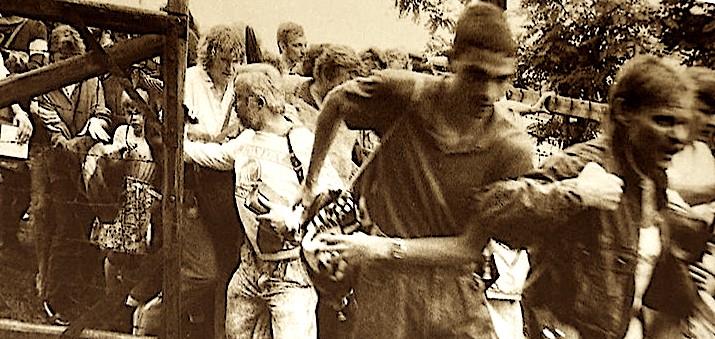 Gjermanolindorët futen për herë të parë në Austri
