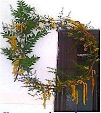 Kurora me degët e kërce-përce, me ferra-shtriga dhe lule thanë në portën e shtëpisë.