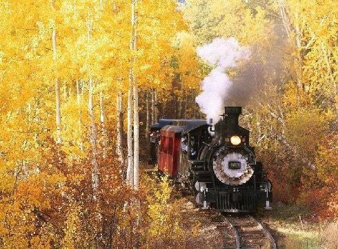 Trenat që çajnë përmes pyjeve...