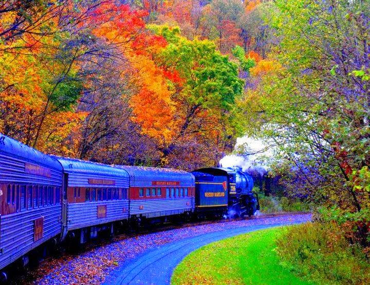 Treni i Jetes...