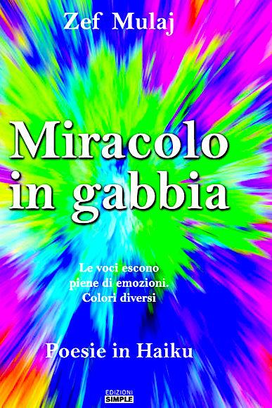 Zef Mulaj - Miracolo in Gabbia - Haiku