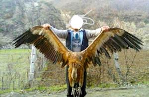 Vrasësit e Shqiponjave