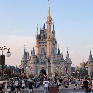 Walt Disney - World Castle