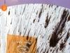 19 - Spine nere - Gjemba te zinj (2) - Gezim Hajdari